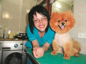 ветеринар,собака, корм,здоровье