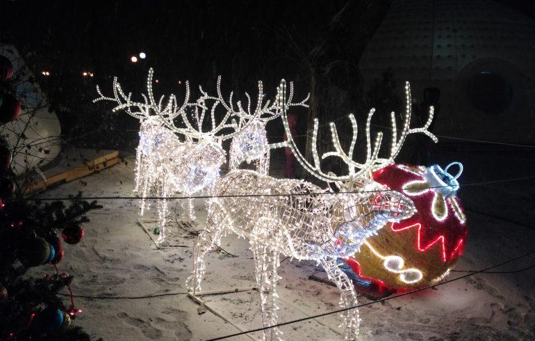 олени,новый год, рождество, киев,парк