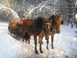 Мазуры,кони,сани,Польша
