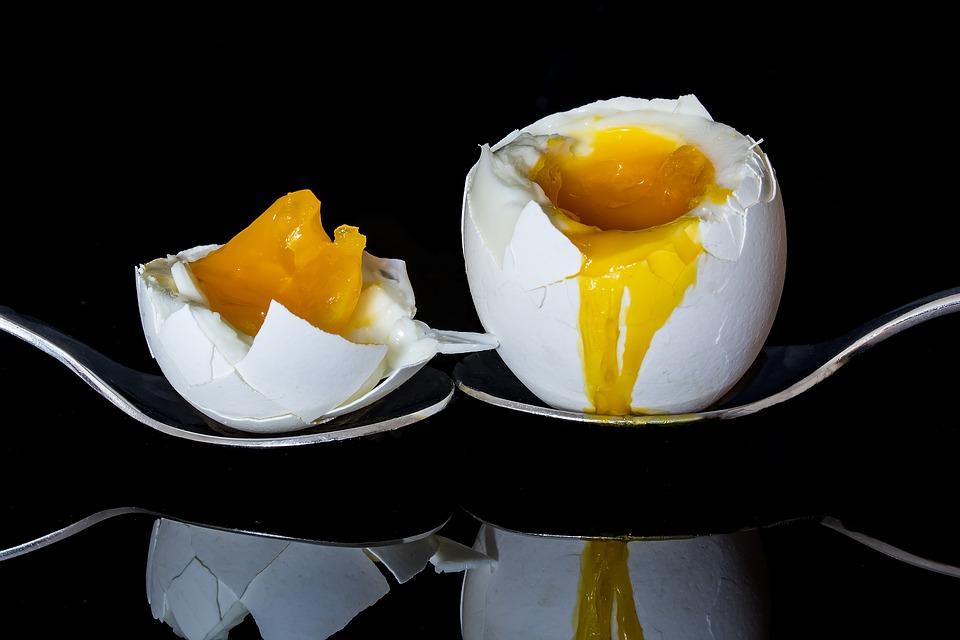 польза и вред яйца
