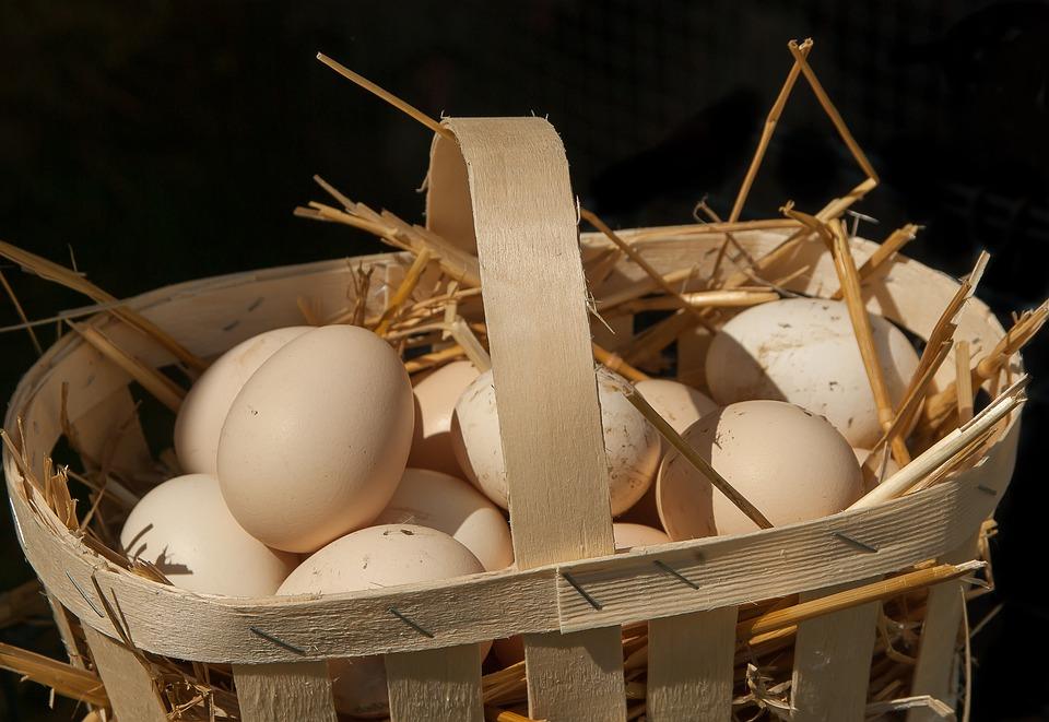 домашние яйца в корзинке