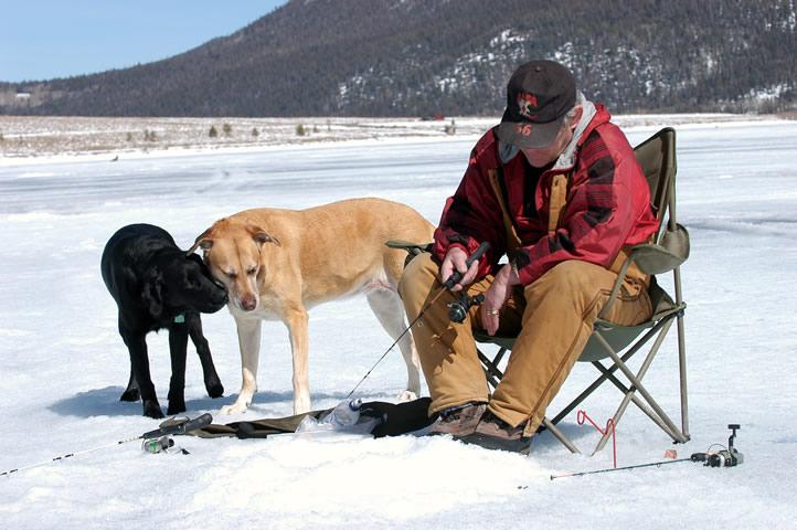 зима,рыбалка,рыбак, собака
