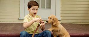 Итан и Бэйли, мальчик и собака