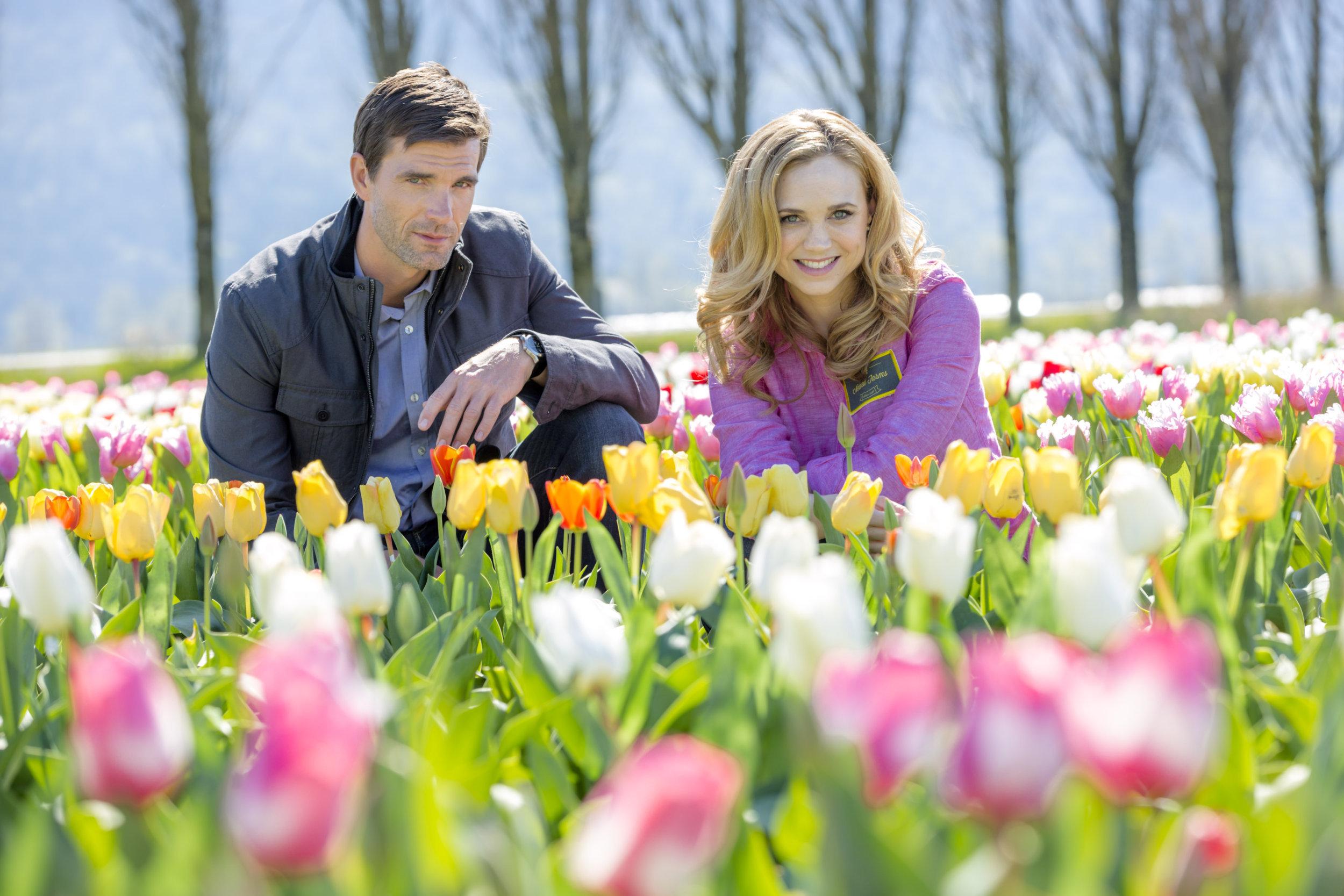 весенние тюльпаны и люди