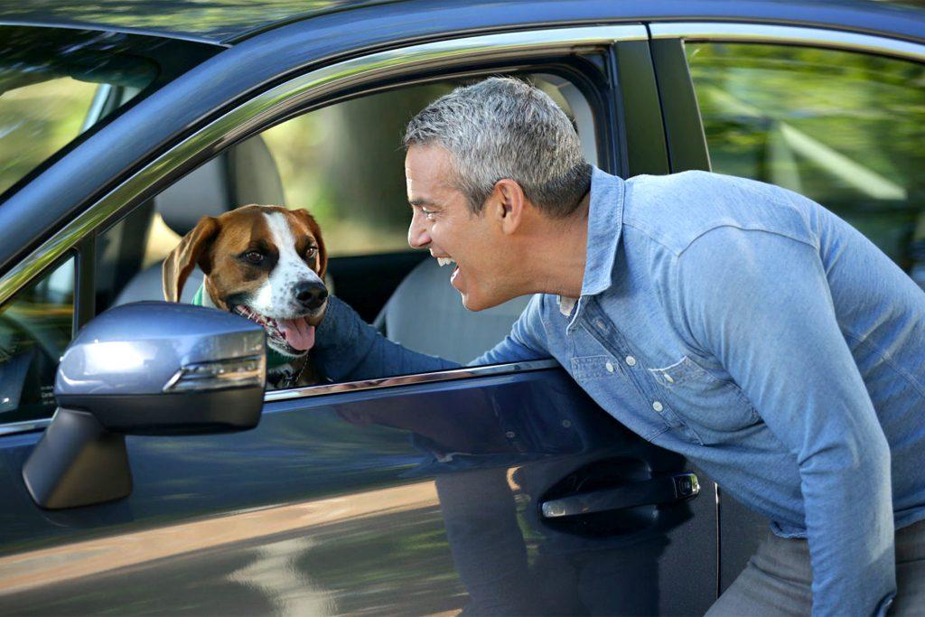 хозяин, собака, машина