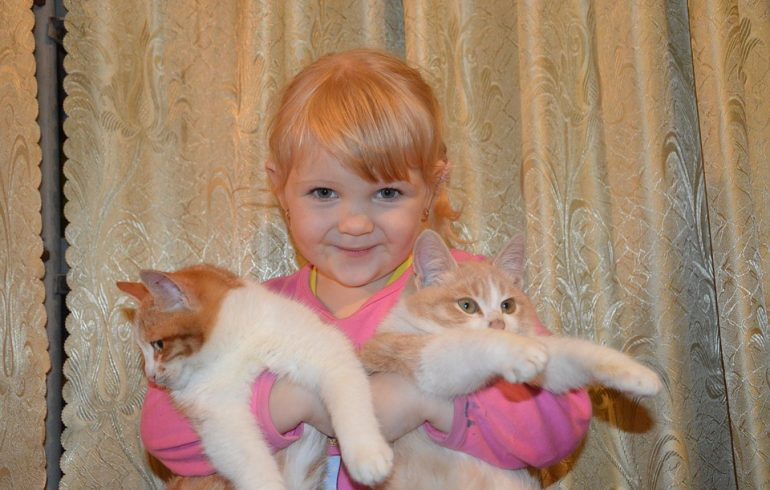 девочка держит на руках котов