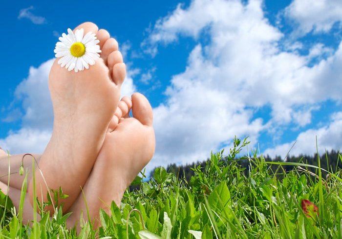 ножки на траве