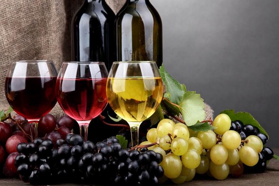 вино и виноргад