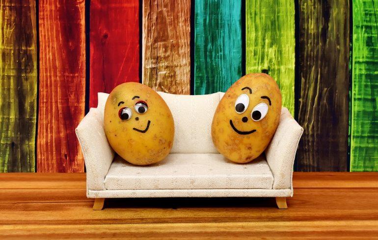 две картошки на диване