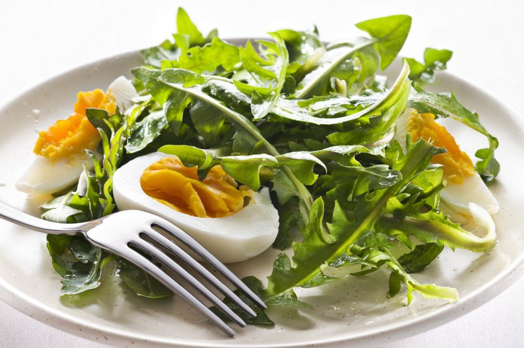 салат витаминный из одуванчика и крапивы