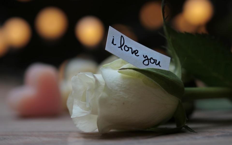 белая роза с запиской