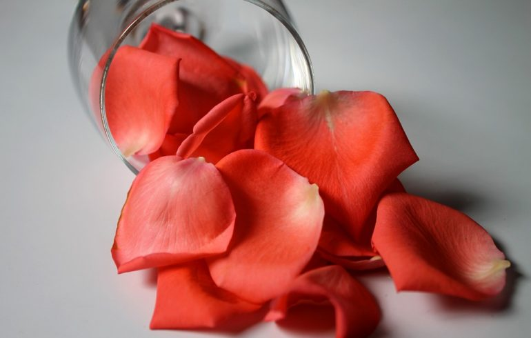 делаем духи их роз