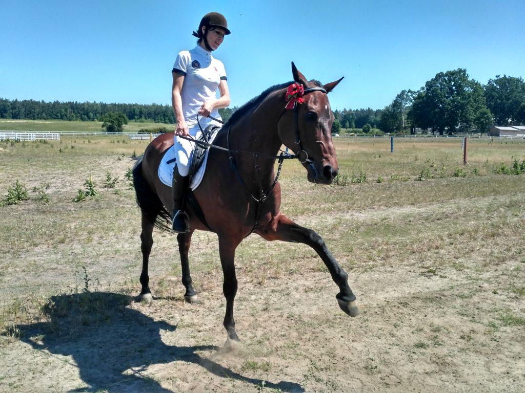 конь и наездница комплекс «Сокіл».