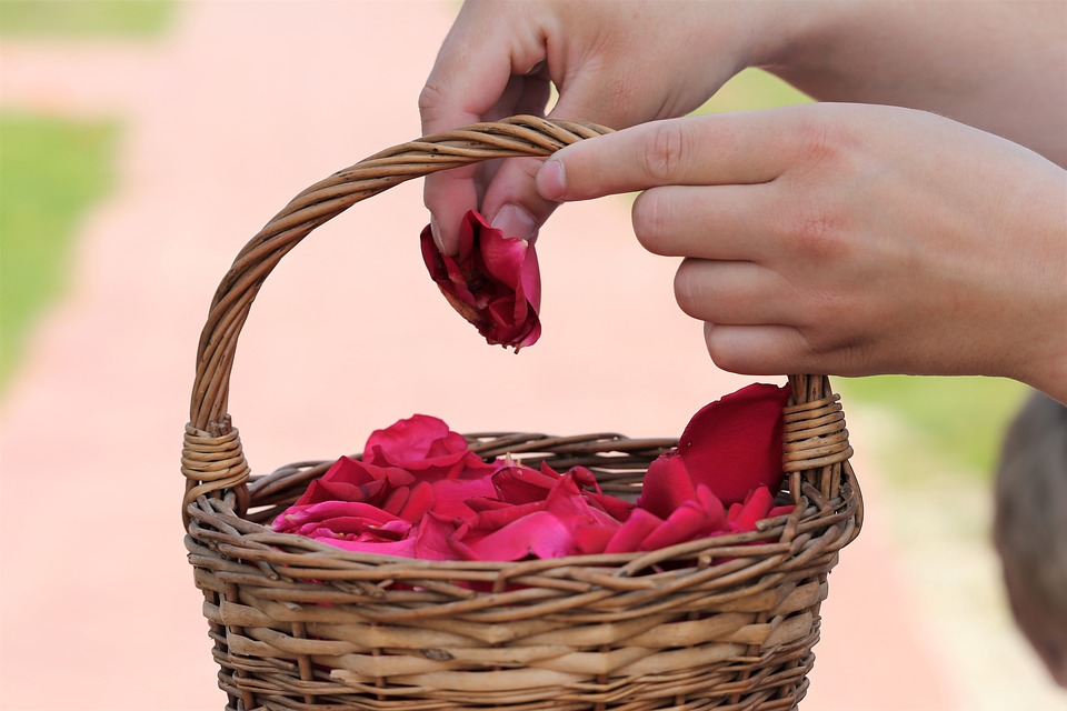 Из лепестков роз делают лечебные средства.