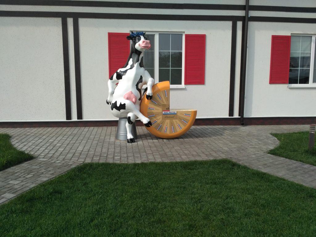 сыр и корова на европейской сыроварне