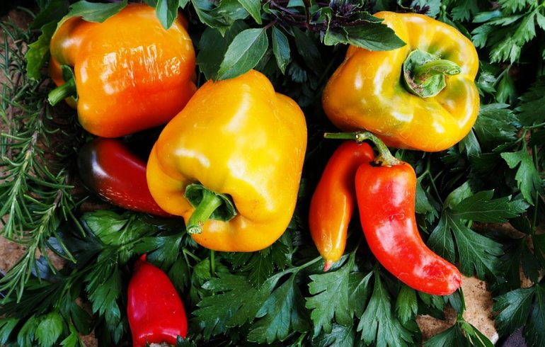 ТОП – 3 рецепта из болгарского перца
