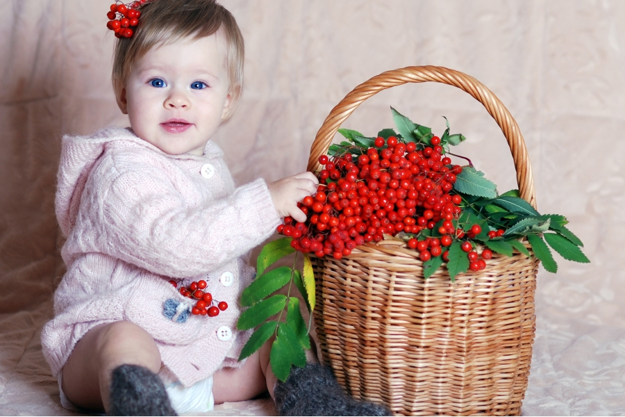 калина в корзине и ребенок ядом