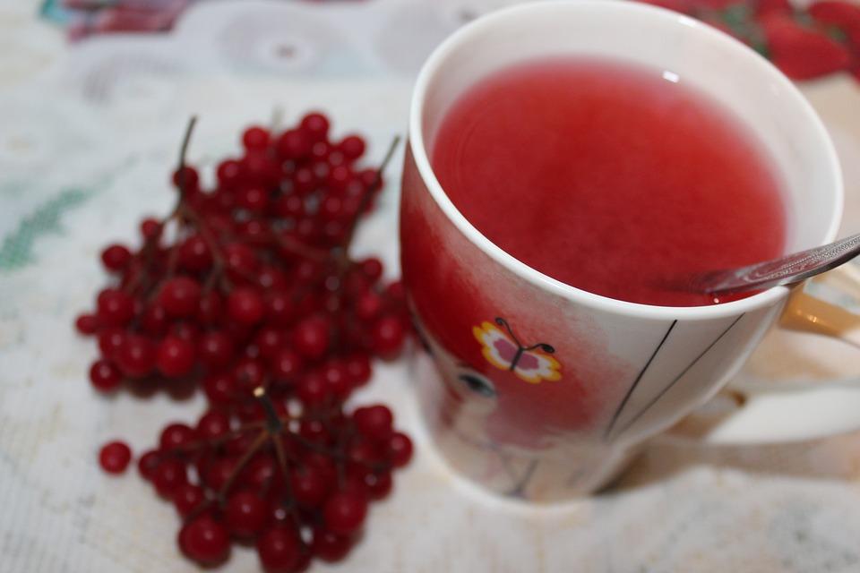 калина и чай из ягоды