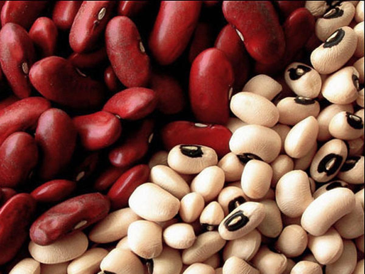Чем отличается красная фасоль от белой