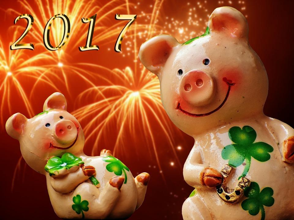 Как отпраздновать Новый 2019 год Свиньи