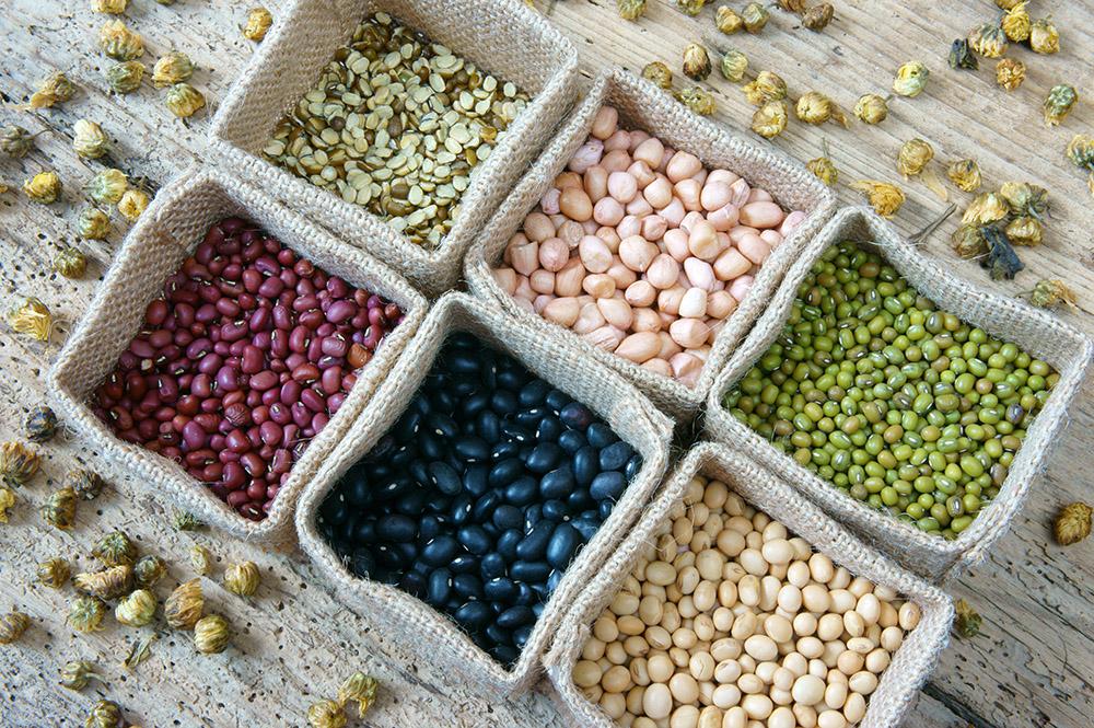 Как выбрать семена для рассады правильно