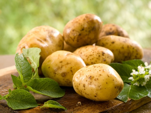 картофель,бородавки