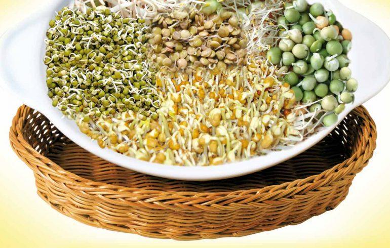 пророщенные зерна