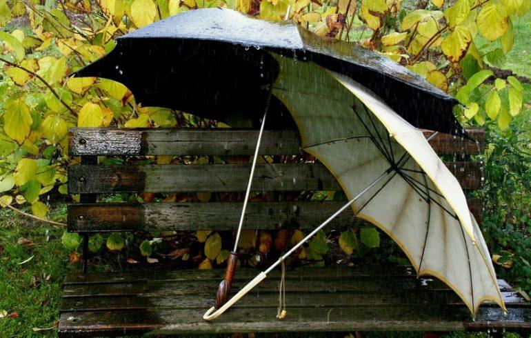 скамейка и зонты