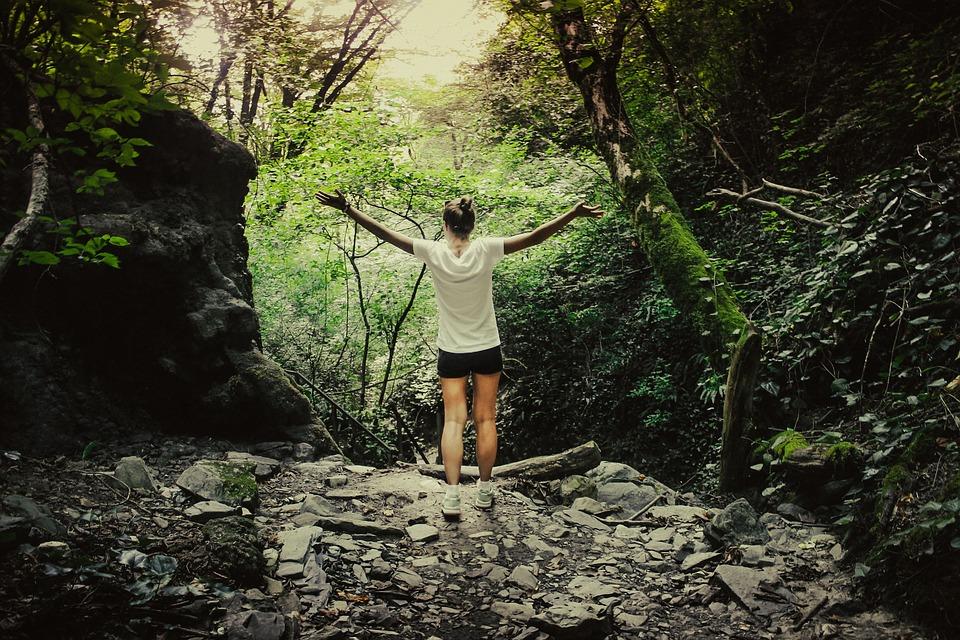 девушка по деревьям в лсу определяет где юг и север
