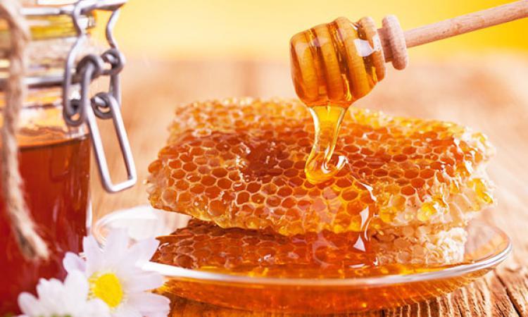 Спас меду припас