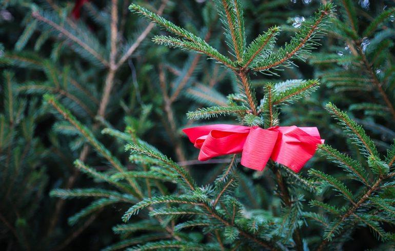 елка в новый год
