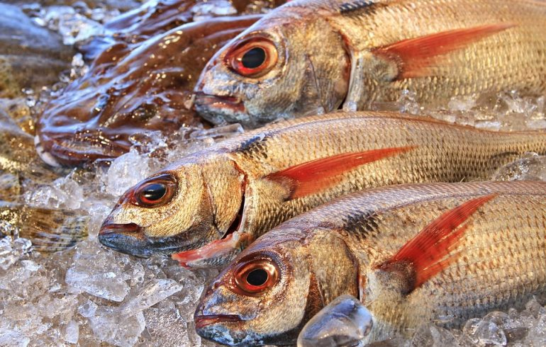 охлажденная рыба