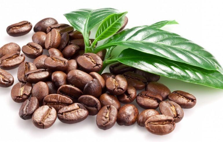 кофе и листья
