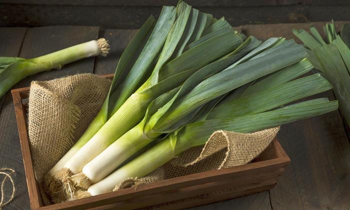 Как вырастить лук- порей дома