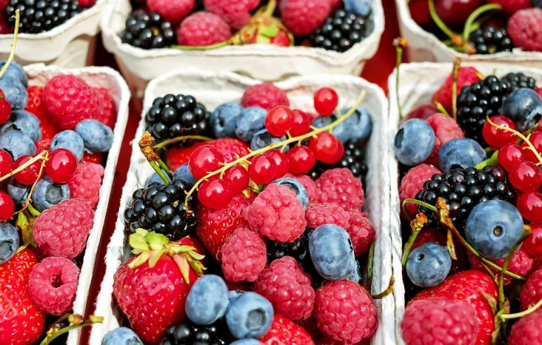 ягоды, уход, малина, смородина, ежевика, крыжовник, жимолость
