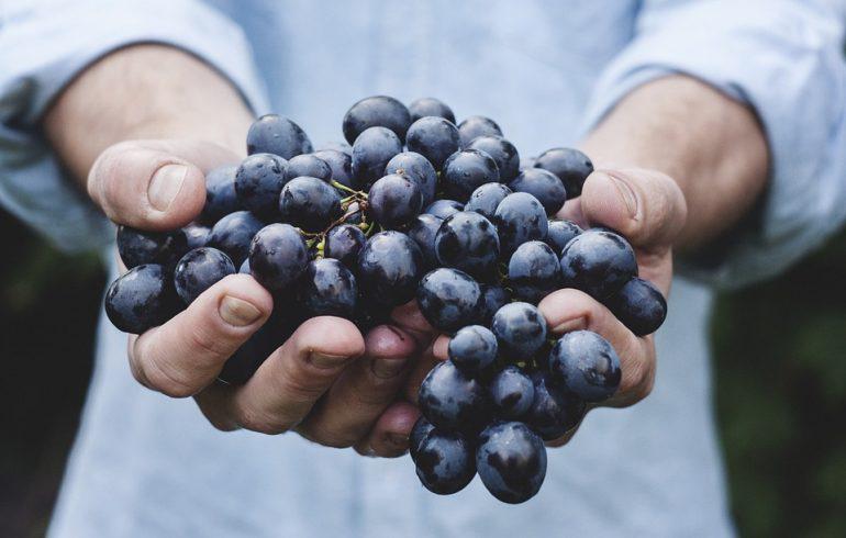 ТОП -5 целебных рецептов из винограда