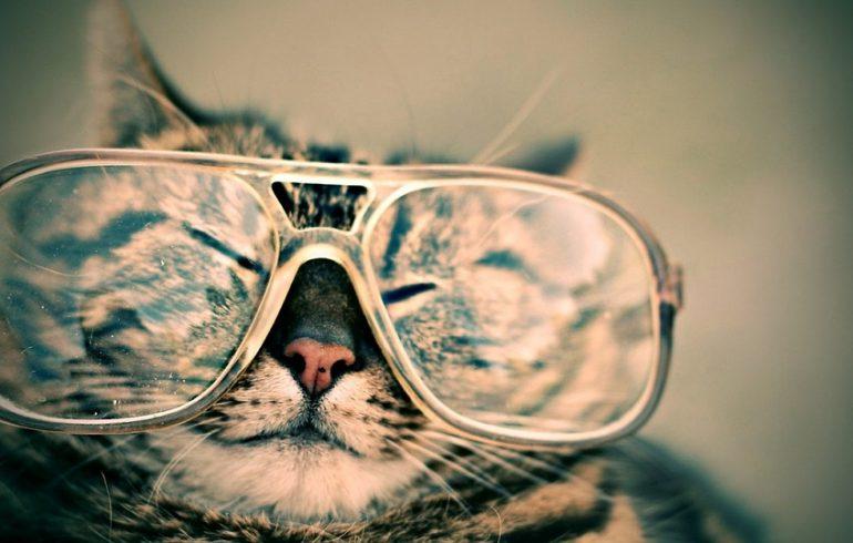 Чтобы очки не «потели»