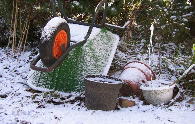 Что нужно сделать в саду в феврале