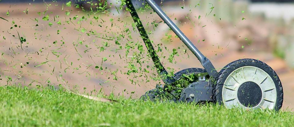газонокосилка стрижет траву