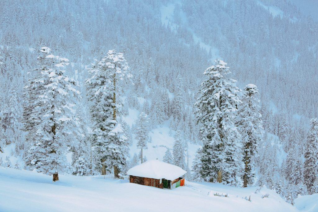 курорт Годердзи зимой в снегах