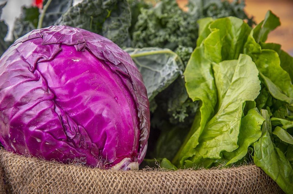 салат, рецепт, приготовление. капуста. зелень