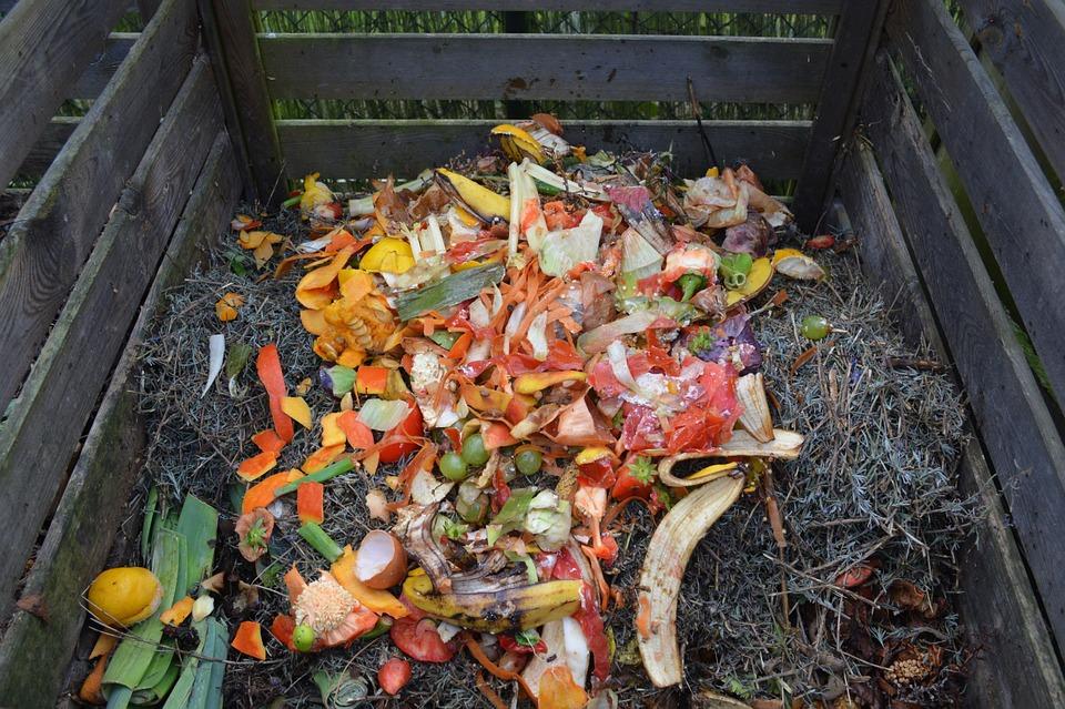 компост состоит из органических отходов