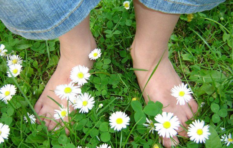 Лечим летние болезни