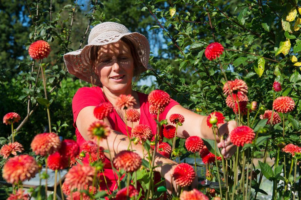 женщина у клумбы с цветами