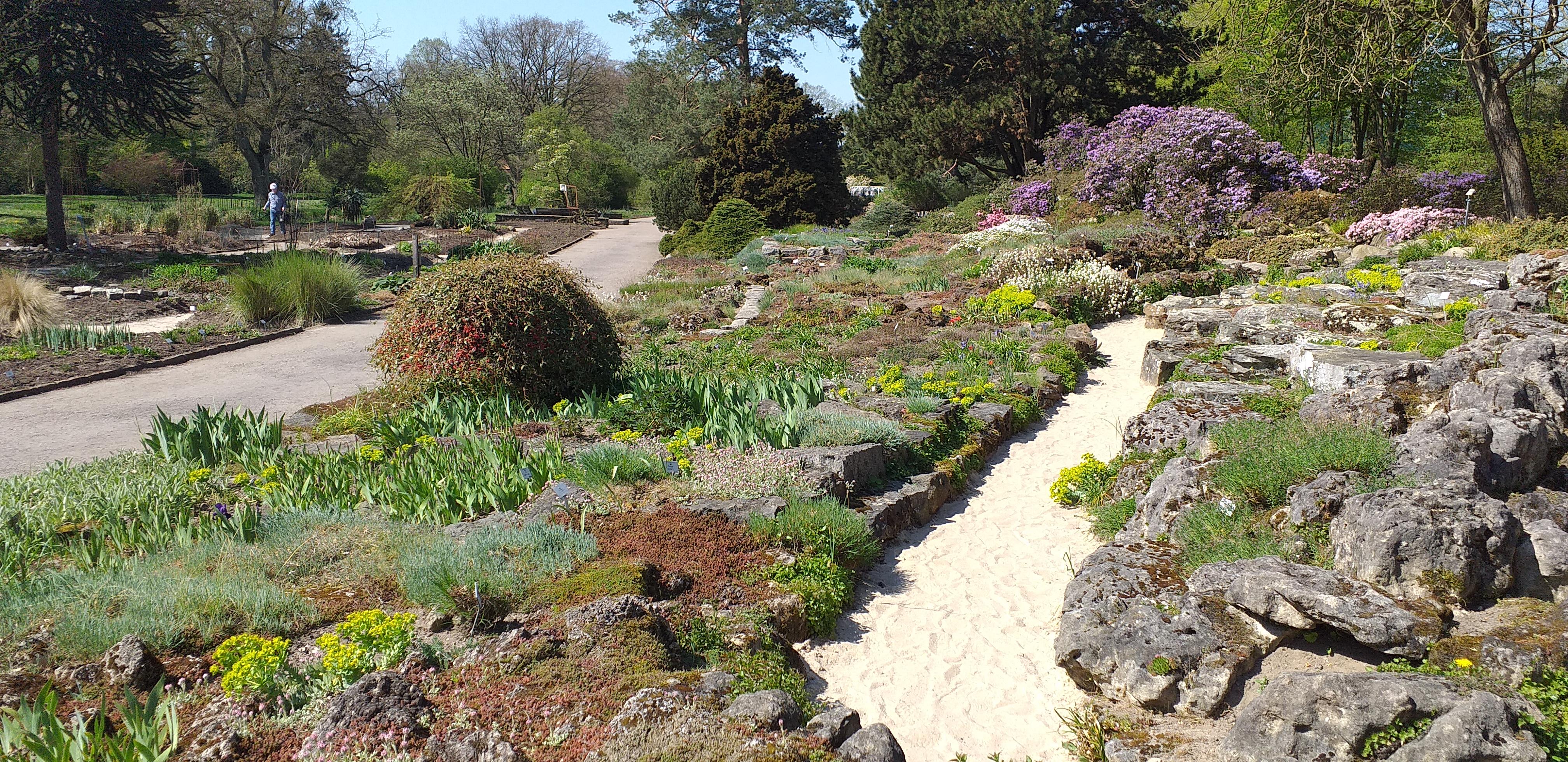 Ботанический сад Бремена