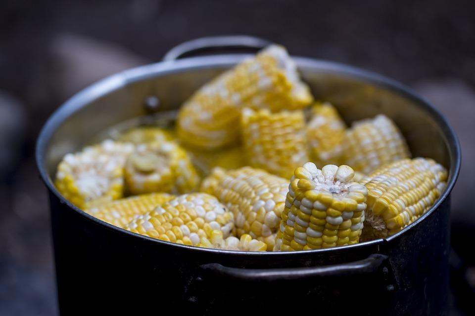 кукуруза варится в кастрюле