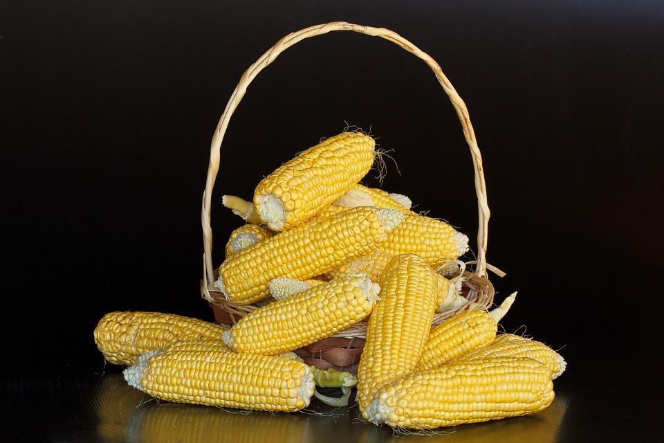 кукуруза в корзинке