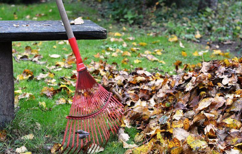 Что нужно сделать в саду и огороде в октябре