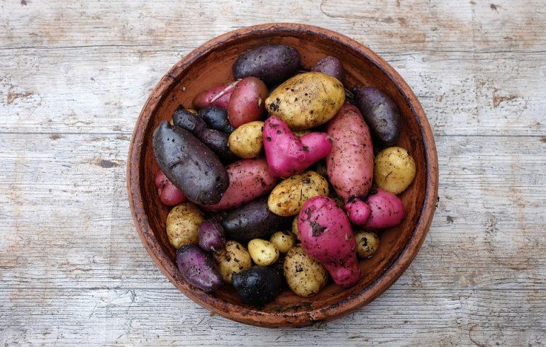 простые рецепты из картофеля