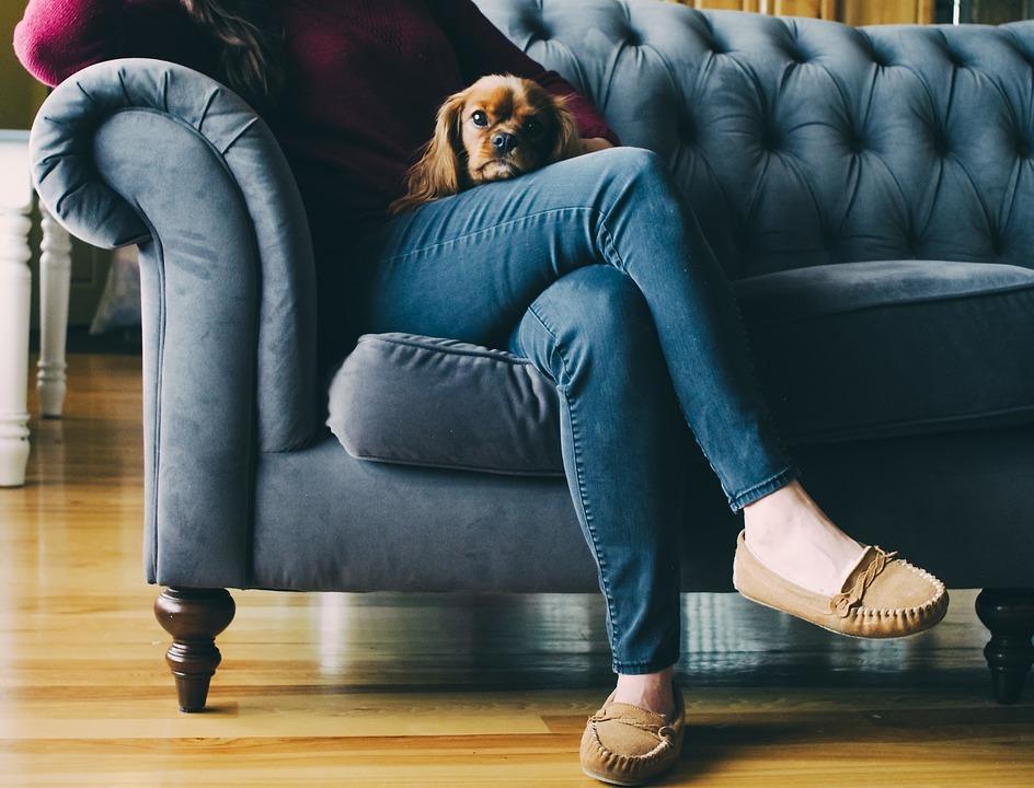 дама на диване с собакой в туфлях